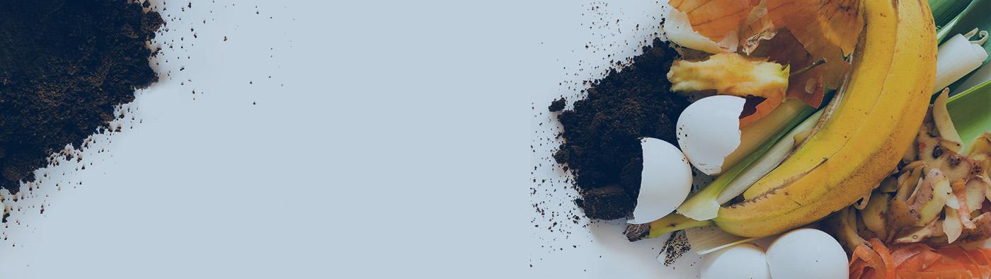 Blog_Food Waste