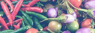 Digital Traceability Increase Food Safety